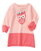 Owl Colorblock Sweater Dress