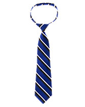 Striped Satin Tie