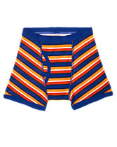 Striped Boxer Briefs