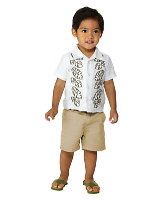 Jungle Safari Outfit by Gymboree