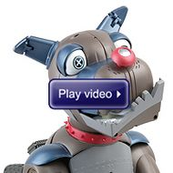 Watch the Robotic Junkyard Dog in action