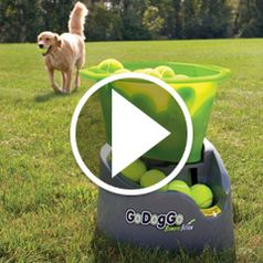 Watch The Automatic Canine Fetch Machine in action.