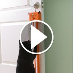 Watch The Feline's String Fling in action