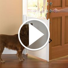 Watch The Dog Escape Preventer in action