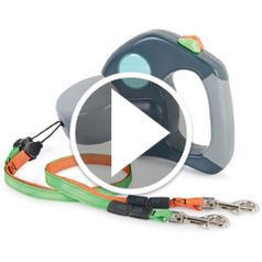 Watch The Tangle Free Dual Dog Leash in action