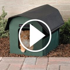 Play video for The Only Outdoor Heated Cat Shelter