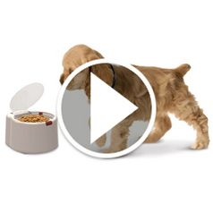 Watch	The Microchip Activated Pet Feeder in action