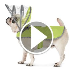 Watch	The Canine�s Raincoat in action