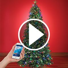 Watch The Music and Light Show WiFi Christmas Tree in action