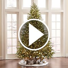 Play video for The Worlds Best Prelit Tree