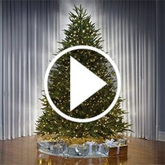 Play video for The Worlds Best Prelit Christmas Trees