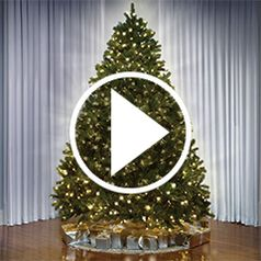 "The World's Best Prelit Christmas Trees in action"" style=""border-width: 1px; border-style: solid;"