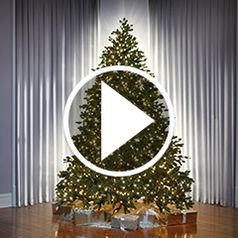 The World's Best Prelit Christmas Trees in action� style=�border-width: 1px; border-style: solid;