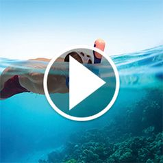 Watch The Full Face Easy Breathing Snorkel Mask in action