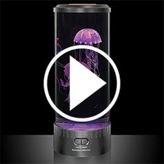 Play video for The Hypnotic Jellyfish Aquarium