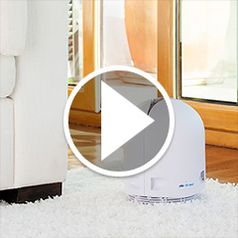 Play video for The Germ and Mold Destroying Air Purifier