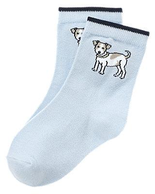 Boys Spring Blue Puppy Sock at JanieandJack