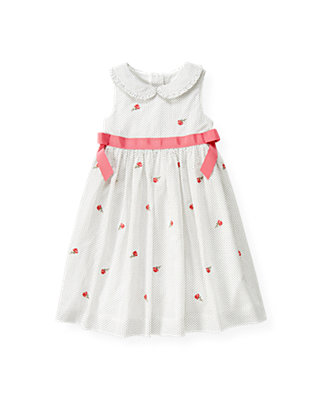 Jet Ivory Dot Rose Embroidered Pindot Dress at JanieandJack