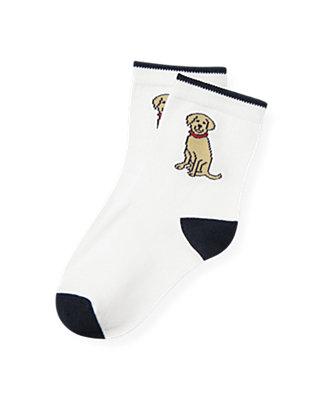 Boys Pure White Dog Sock at JanieandJack