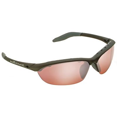 Native Hard Top Polarized Sunglasses