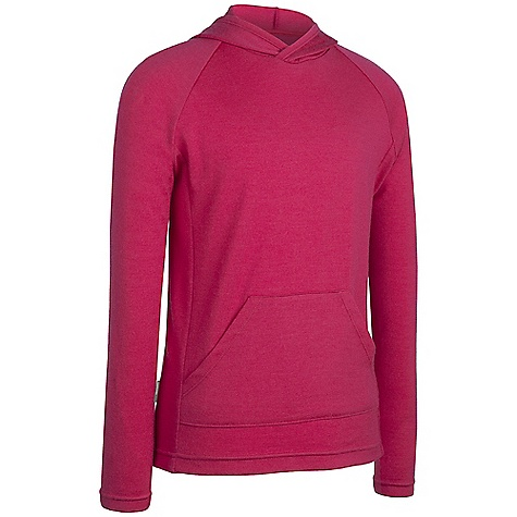 photo: Icebreaker Adventure Long Sleeve Hood base layer top