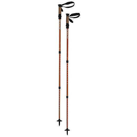 photo: Kelty Ridgeline 2.0 antishock trekking pole