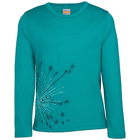 Icebreaker Tech Long Sleeve Crewe