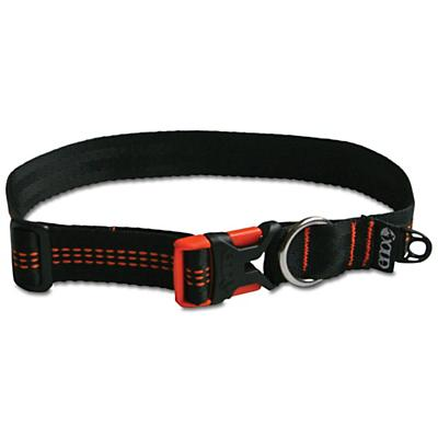 Eagles Nest Re-Collar