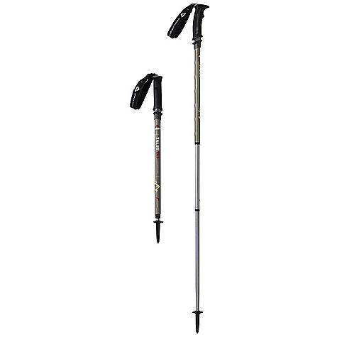 MSR Talus TR-2 Trekking Pole