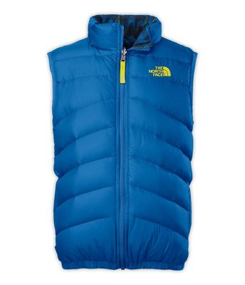The North Face Reversible Moondoggy Vest