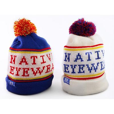Native Keep Your Noggin Warm Beanie