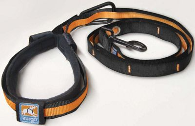 Kurgo Quantum Leash