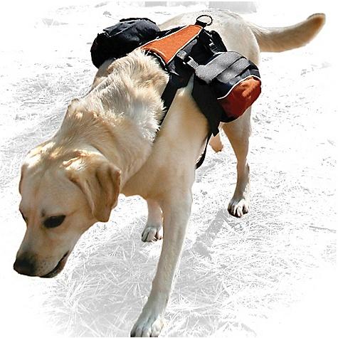Kurgo Wander Pack 2261969 00028 Photo
