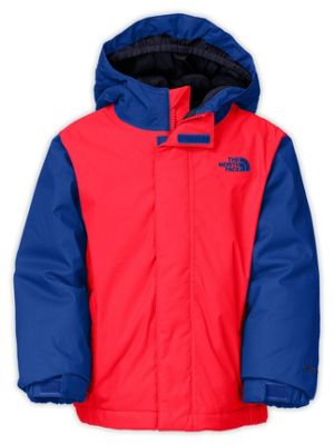 The North Face Toddler Boys' Darten Insulated Jacket