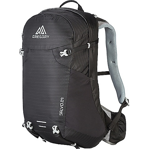 Gregory Men's Salvo 24L Pack True Black