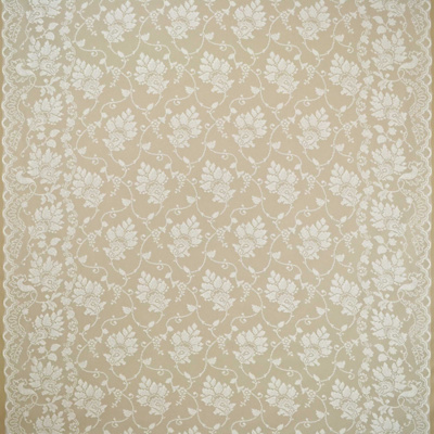 Homecoming Lace - White