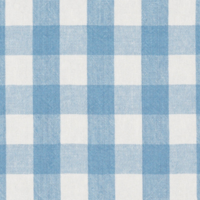 Old Forge Gingham - Sky/White