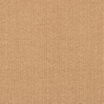 Lamun Weave - Palm