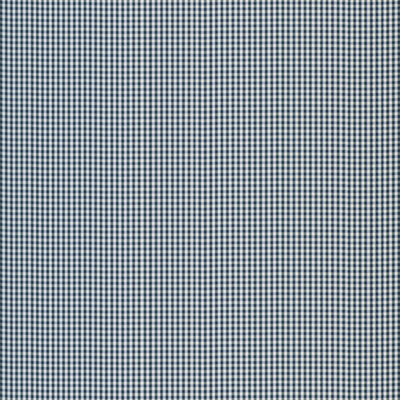 Oak Mill Gingham - Marine Blue