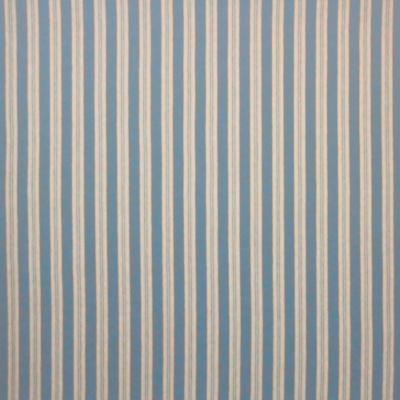 Timber Trail Stripe - Denim