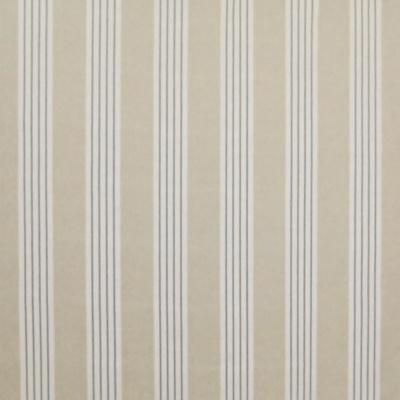 Round Swamp Stripe - Linen Blue