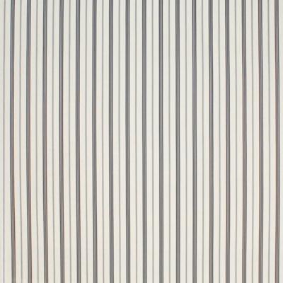 Du Boir Stripe - Navy Spectator