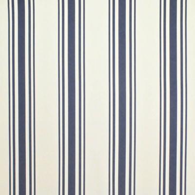 Flying Point Stripe - Nautical Blue