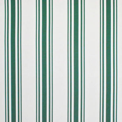 Flying Point Stripe - Cricket
