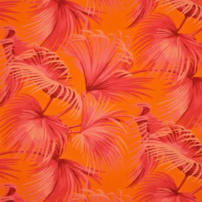 Costa Tropica Palm - Fuschia