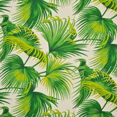 Costa Tropica Palm - Palmetto