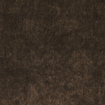 Palace Silk Velvet - Bridle