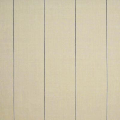 Ice House Stripe - Denim