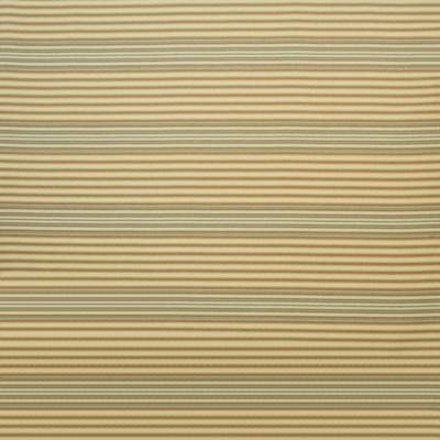 Backbone Trail Stripe - Clay
