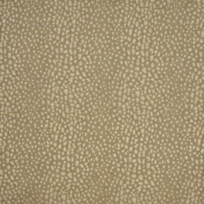 Nairobi Leopard - Stone
